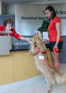 Charisse Holmes and her dog Rudy visit patients at Wake Medical Center in Raleigh. (Amy Freeman photo)