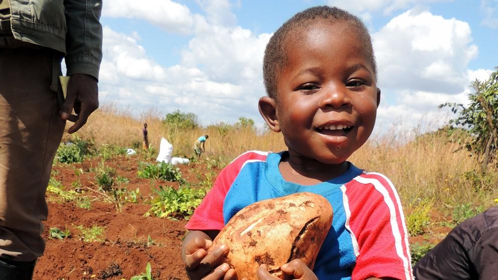 boy holding produce in field