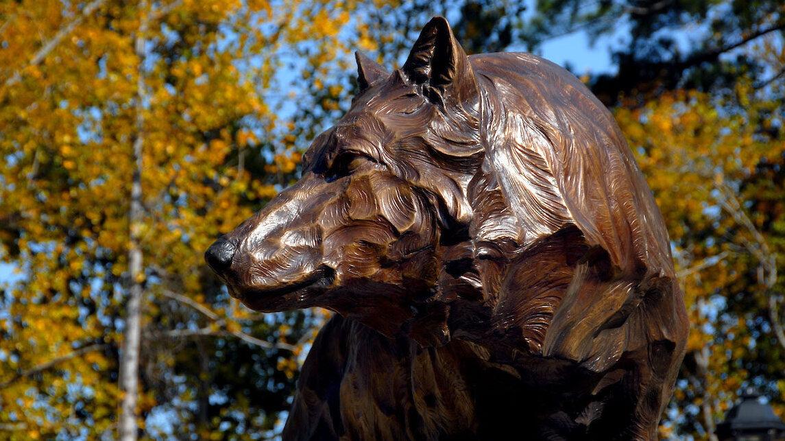 wolf statue on campus