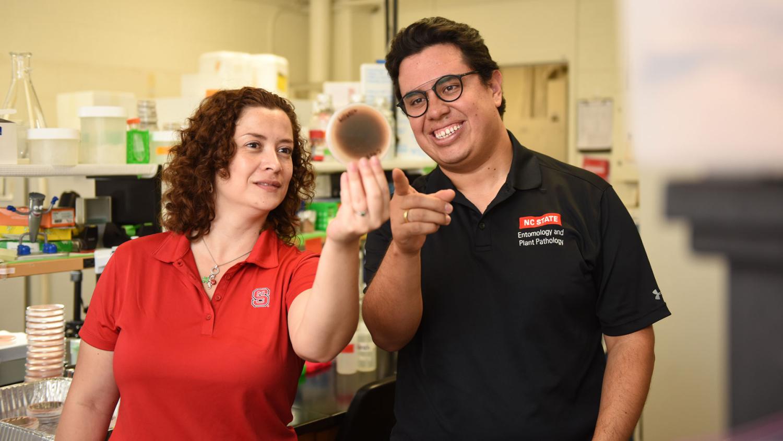 Lina Quesada and Camilo Parada examine a petri dish